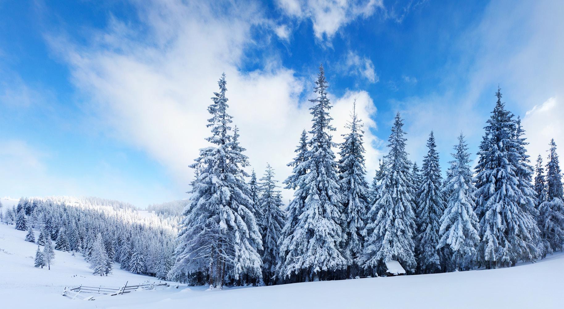 Зимният сезон – какви капани дебнат нашите очи